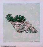 Brigitta Heyduck - J761 - Muschel